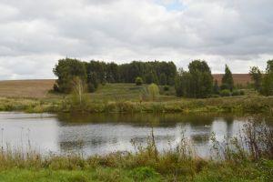 Телепроект «Домой! Новости» открыл сезон экскурсий по загородным коттеджным поселкам